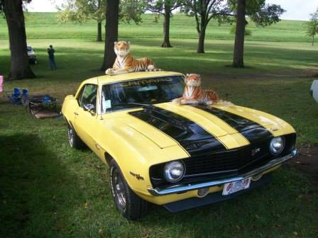 Yellow Car with Tigers